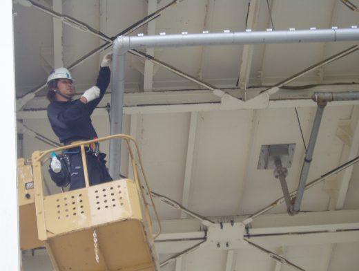 十全化学 ムクドリ及び鳩飛来防止工事 清掃 忌避剤設置